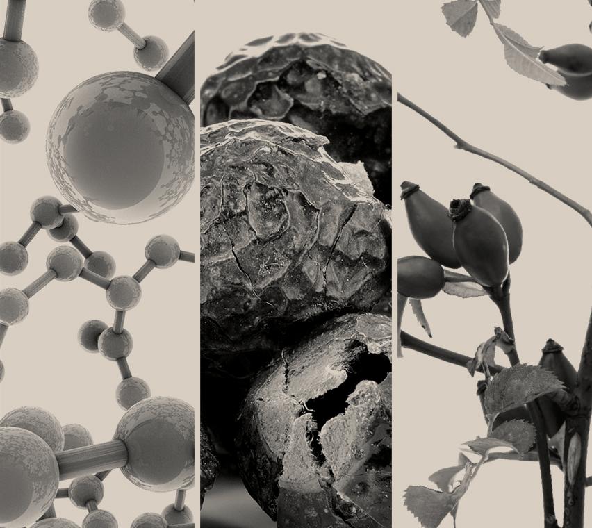 Micelles
